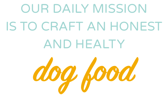 Healthy Dog Food Mission