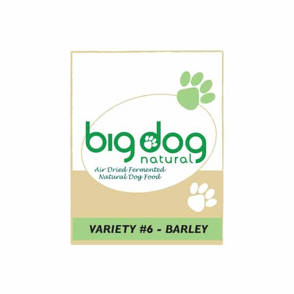 Variety 6 Barley